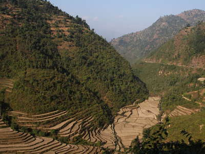 Lesser Himalaya with terraced farmland