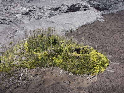 East Rift Zone  |  Island in lava flows