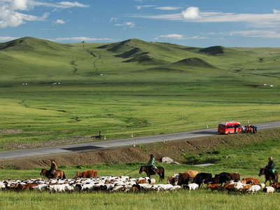 Erdene  |  Steppe with livestock and tourists