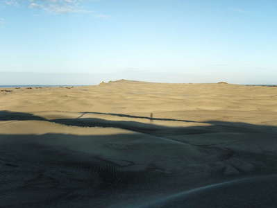 Farewell Spit  |  Dune field panorama