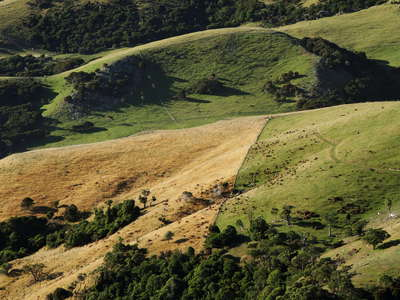 Banks Peninsula |  Rangeland