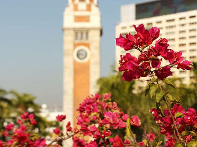 Hong Kong  |  Tsim Sha Tsui Clock Tower