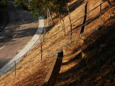 Hong Kong  |  Slope management