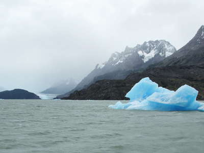 PN Torres del Paine  |  Lago Grey with icebergs