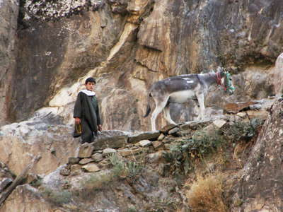 Panj Valley  |  Boy with Donkey (Afghanistan)