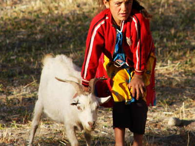 Savnob  |  Girl with goat