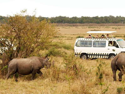 Masai Mara NR  |  Rhinoceros and tourists