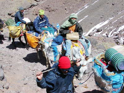 Toubkal NP  |  Trekking business