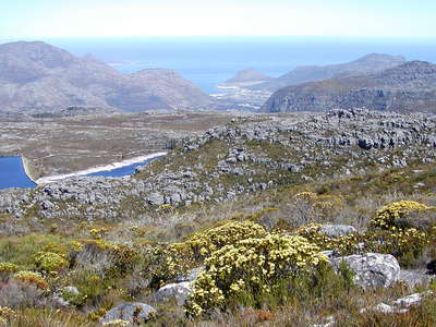 Table Mountain and Hout Bay