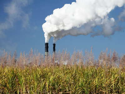Proserpine  |  Sugar cane field and sugar mill