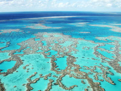 Great Barrier Reef  |  Hardy Reef