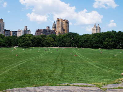 Central Park  |  Sheep Meadow