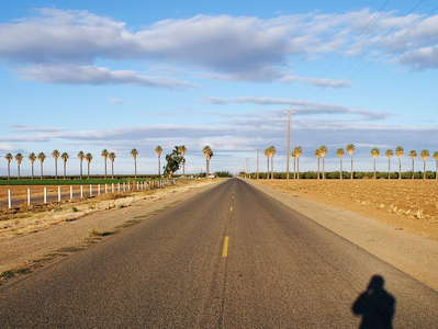 San Joaquin Valley  |  Farmland