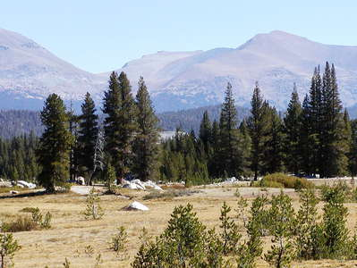 Yosemite NP  |  Tuolumne Meadows