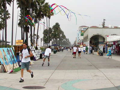 Los Angeles  |  Venice Beach