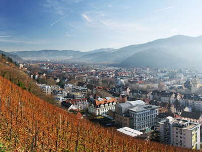 Freiburg im Breisgau  |  Vineyard and Dreisam Valley