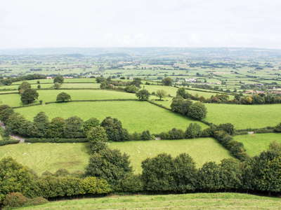 Glastonbury  |  Somerset landscape