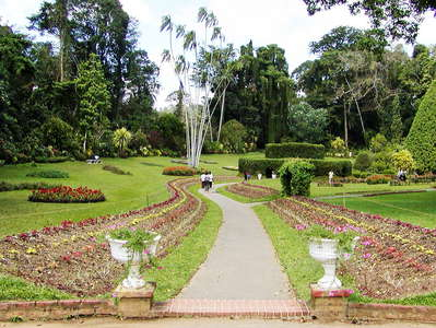 Peradeniya Royal Botanical Gardens