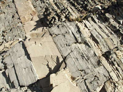 PN Torres del Paine  |  Turbidite rocks