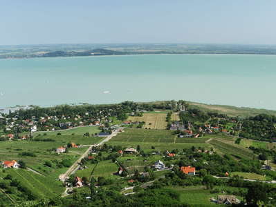 Balaton | Vineyards at Badacsony